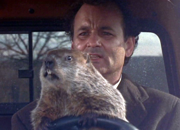 gal-groundhog-day-murray2